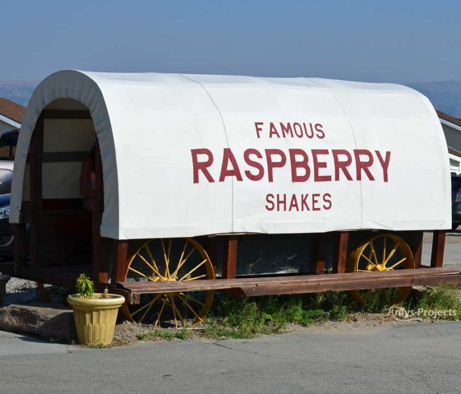 Famous-Raspberry-Shakes-Bear-Lake